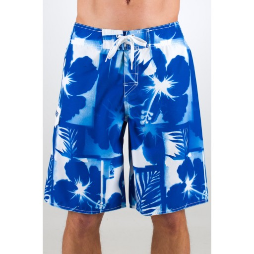 Quiksilver Chewlips Men's Shorts (Royal)