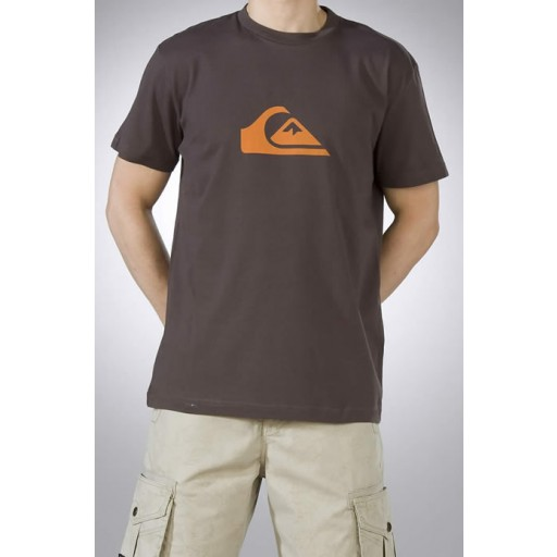 Quik Mountain And Wave Tee In Bark