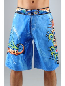 Quiksilver Drop Out Board Shorts