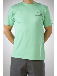 Quiksilver Backyard T Shirt in Mantis