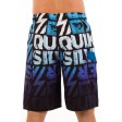 Quiksilver Dipped 21 Boardshorts Back